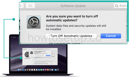 how to Turn on the Automatic Updates